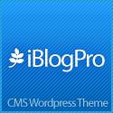 iBlogPro Premium WordPress Theme