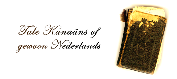tale kanaäns of gewoon nederlands
