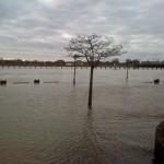 2011-01-16 - Zutphen (4)