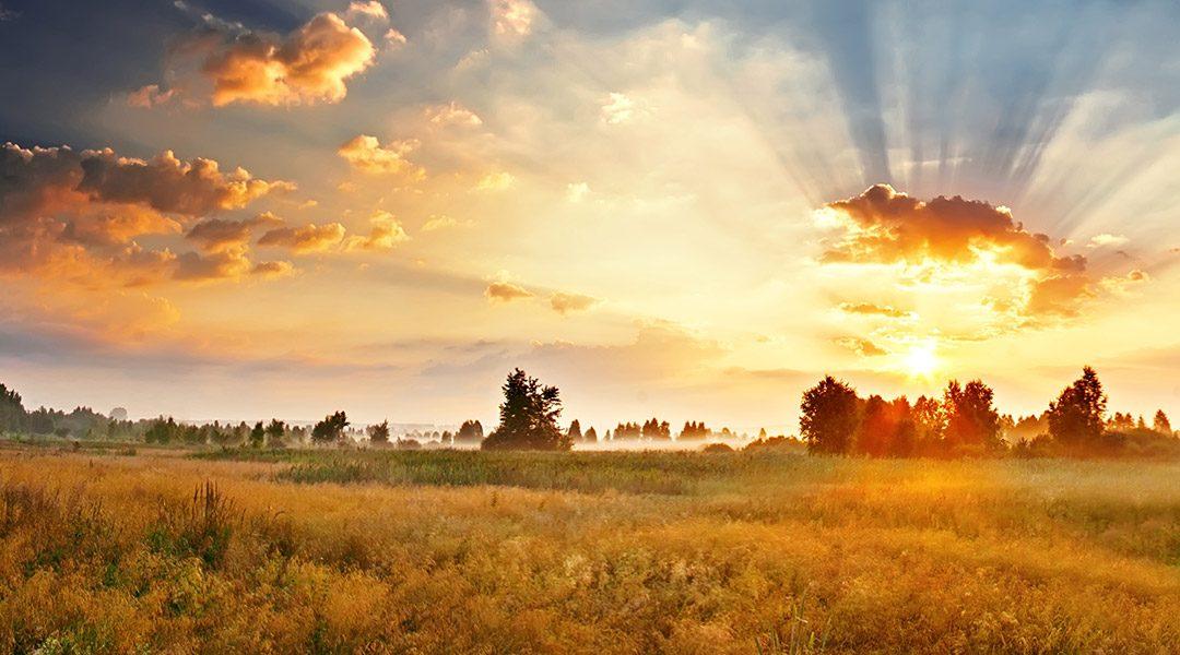 mooie zonsopkomst boven de velden