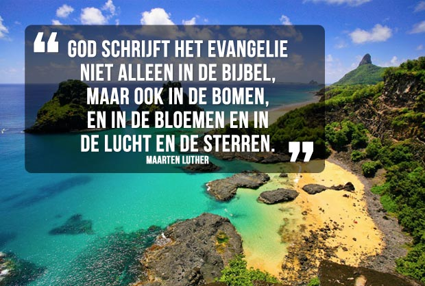 Quote Maarten Luther
