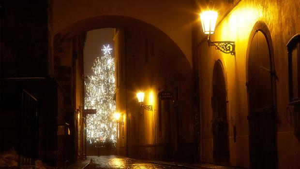 mysterieuze-kerstboom
