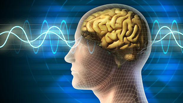 menselijk brein verandert
