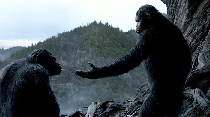 vergeving (dawn of the planet of the apes)
