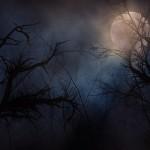 Waar is God als het donker is in de ziel
