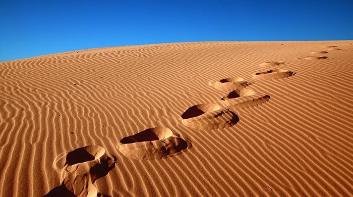 zoektocht in woestijn