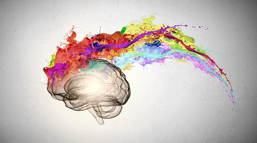 kleurrijk-brein