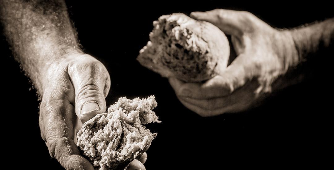 delen van je brood