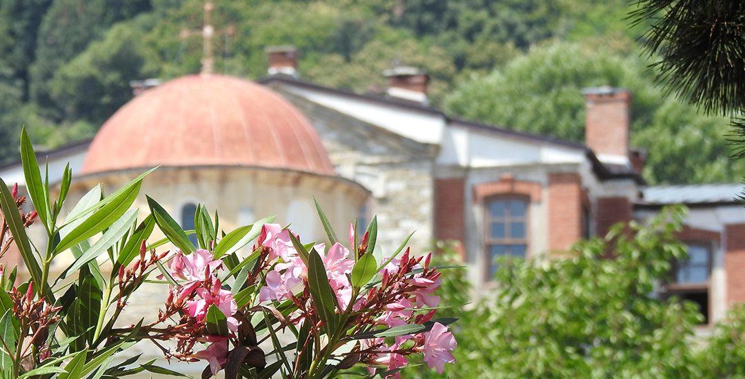 Bloemen in Karyes op Mount Athos
