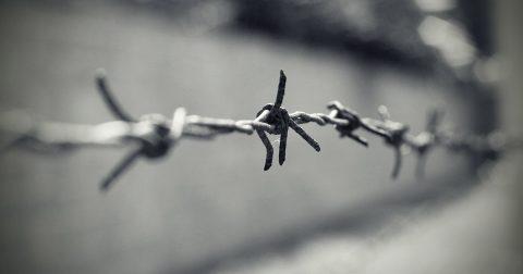 Auschwitz prikkeldraad