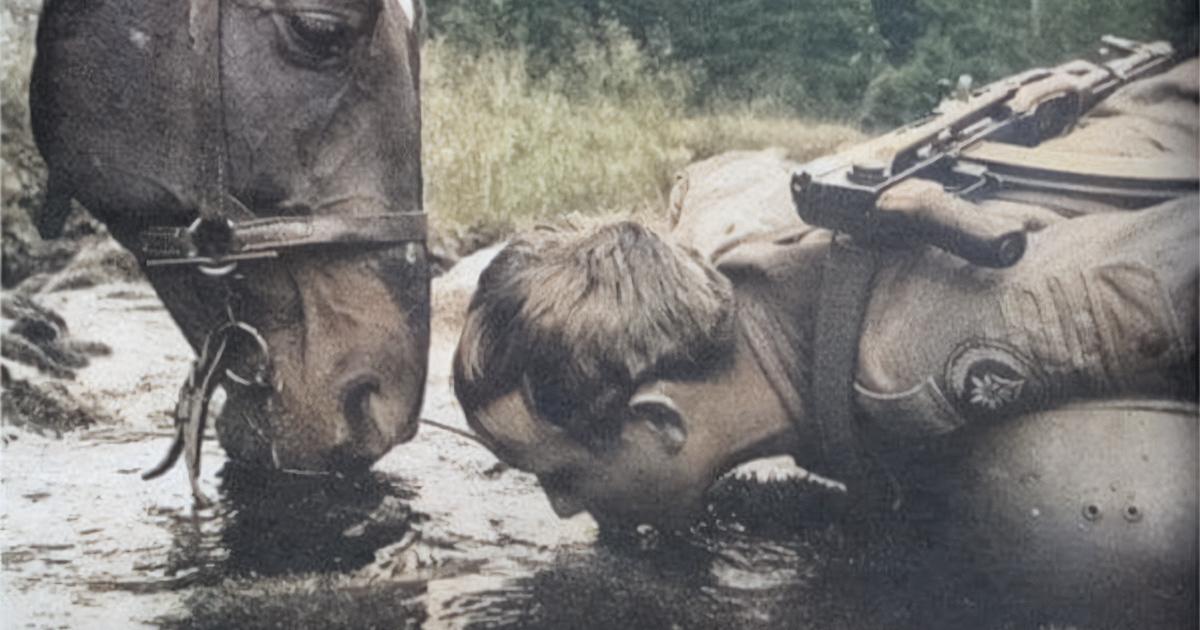 Paard en ruiter drinken uit dezelfde bron